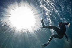Подводные фото Марка Типпла