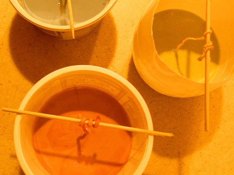 Залейте первый слой воска (или весь воск) в форму. Если вы делаете многослойную свечу -  убедитесь, что воск полностью застыл, прежде чем заливать следующий.