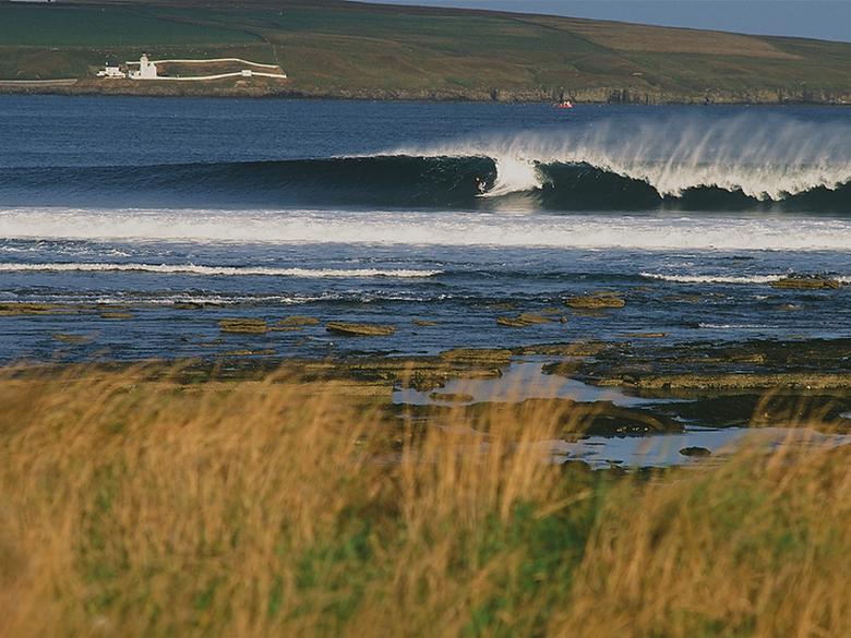 Шотландия. Фото: Гилли
