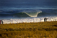 ASP International и ZoSea Media займутся популяризацией про-серфинга