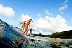 Где лучше заниматься серфингом в 2013 году по мнению CNN