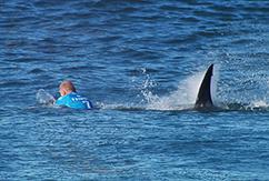 Мик Фаннинг был атакован акулой нa J-Bay Open