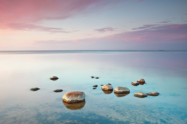 Ближе к воде: книга о влиянии воды на наше здоровье и самочувствие