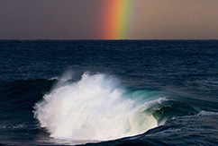 Сюрреализм Южного побережья от Джека Гора