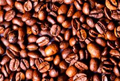 Пять причин пить кофе перед сёрфингом