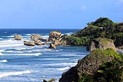 Страна для серф-трипа:  Барбадос