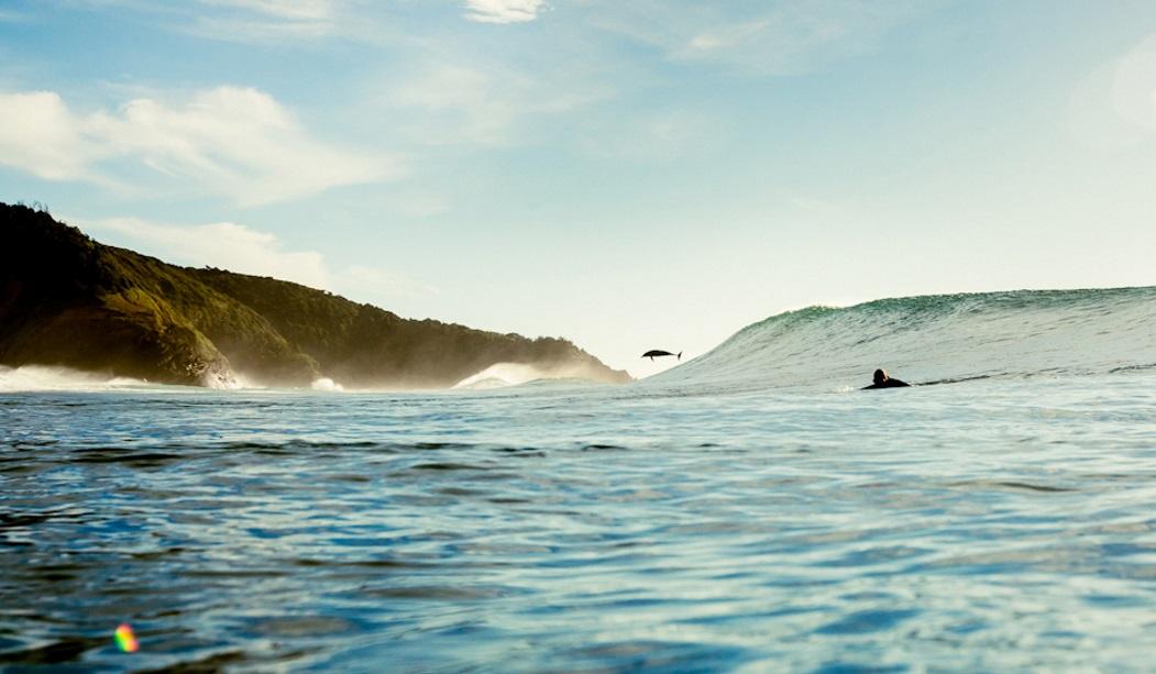 Джонни Абегг поделил волну с дельфином