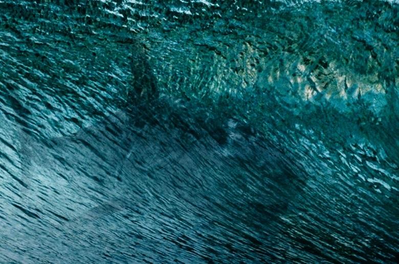 Победители конкурса #Хочу на Отмель побывали на «Ночи акул»
